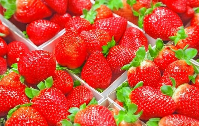 Ретро-помидоры, земляника-гигант и сахарные дыни: над чем трудятся «Сады России»