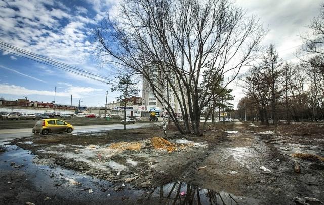 Учёные из Екатеринбурга набрали грязи из 60 самых мерзких луж Челябинска