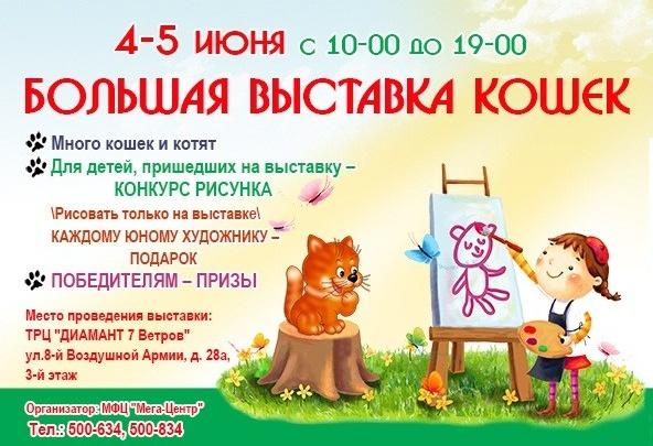 Волгоградцев приглашают на праздник кошек