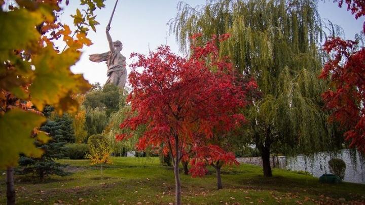 Волгоград вошел в топ-5 лучших городов для осенних путешествий