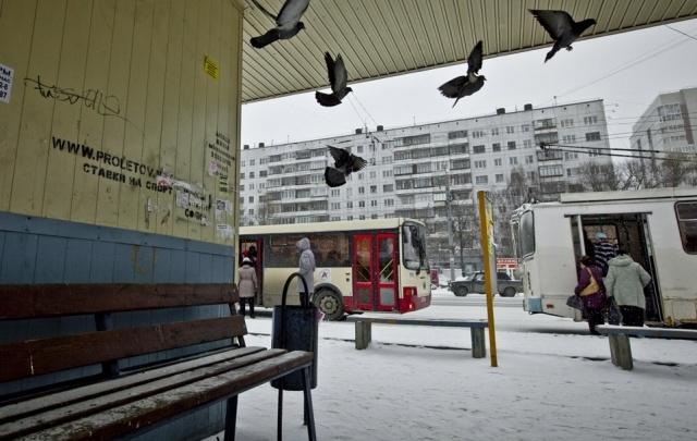 Хозяев остановок в Челябинске заставят навести порядок