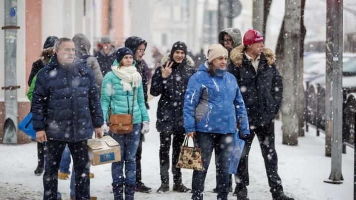 Студентов Ярославля позвали благоустраивать парки и скверы