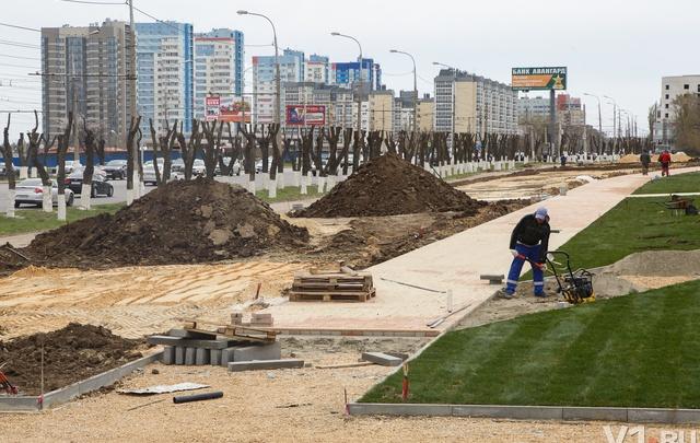 На Аллее России у Мамаева кургана высадили более 350 деревьев и кустарников