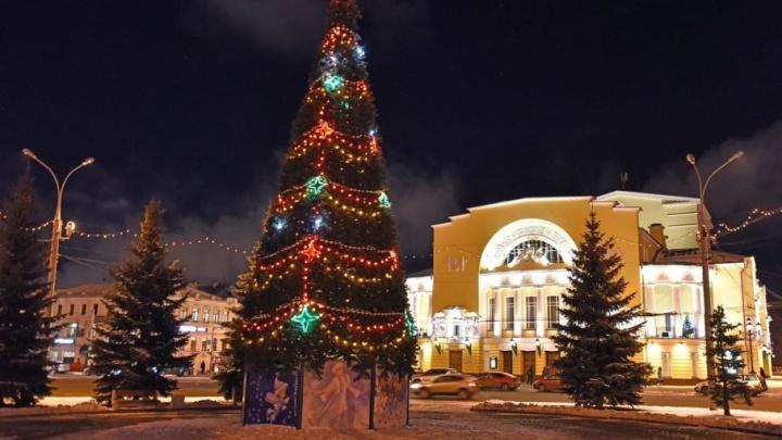 Стало известно, когда в Ярославле поставят самую главную новогоднюю ёлку