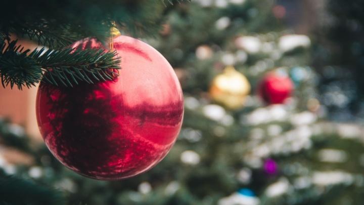 Раздели красавицу: в Батайске похитили украшения с главной новогодней елки