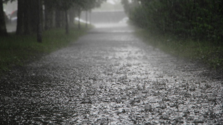 Надвигающийся на СЗФО циклон накроет Архангельскую область сильными дождями