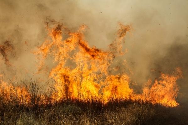 Пожар двигается на детский лагерь со стороны Дона