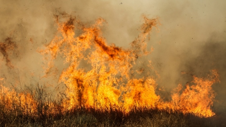 Из-за бушующего пожара эвакуировали целый хутор в Иловлинском районе