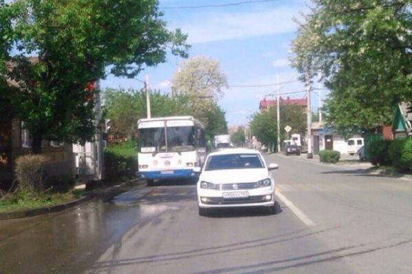 Ростовчане простят мэрию обрезать ветки, закрывающие светофор на Белорусской