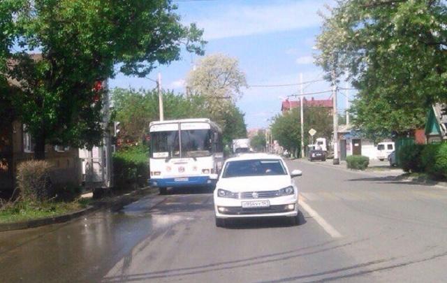 Ростовчане просят мэрию обрезать ветки, закрывающие светофор на Белорусской
