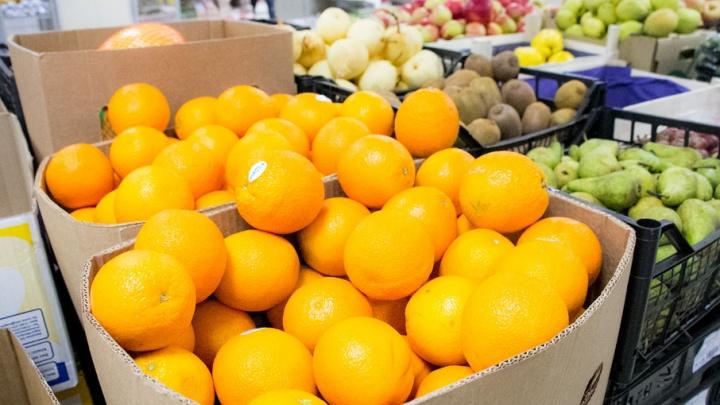 В Азербайджане будут выращивать овощи специально для Поморья