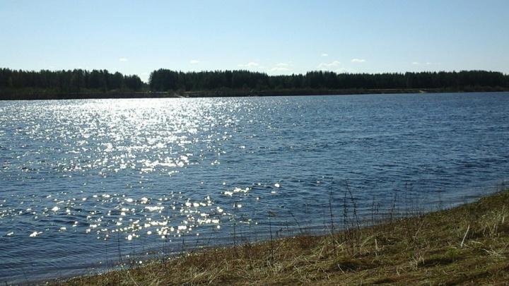 Два инспектора Пинежского заповедника утонули ночью в реке у деревни Голубино