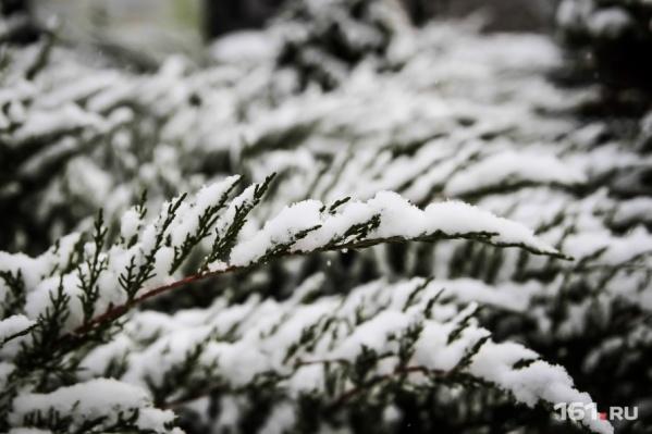 Февраль в Ростове будет морозным