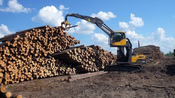 К маю леспромхозы ГК «Титан» заготовили миллион кубометров древесины и перевыполнили план