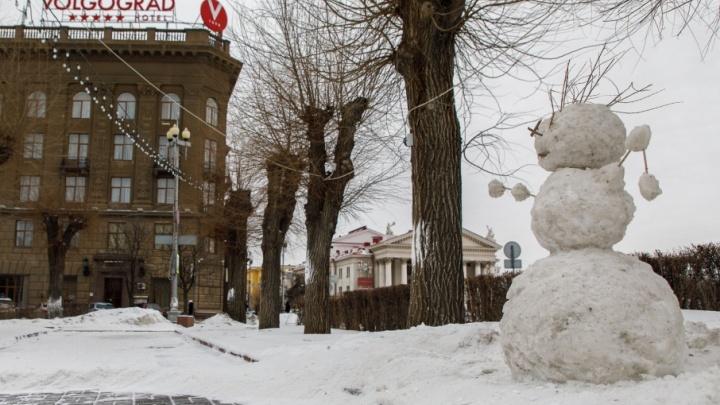 Волгоградский март: на улицы города вышли ледяные снеговики