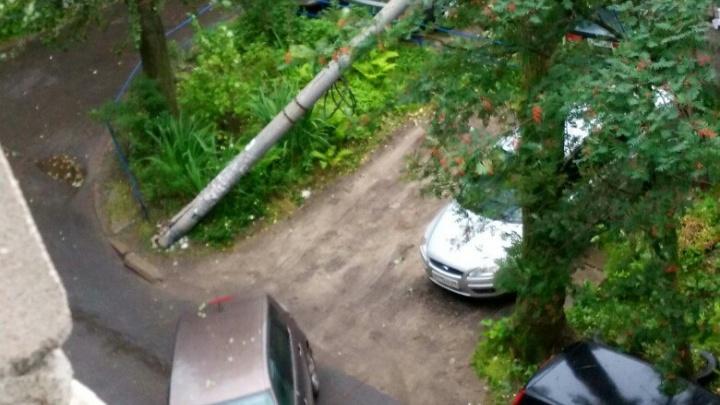 Вырванные с корнем деревья, упавшие заборы и разбитые машины: на Поморье обрушился ураган