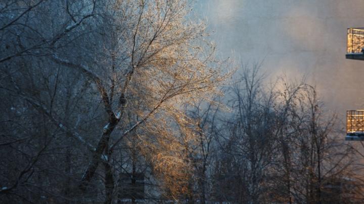 В Тюменской области до 2 марта ожидаются аномальные холода