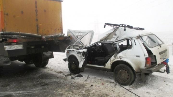 На трассе в Самарской области КАМАЗ раздавил «Ниву»