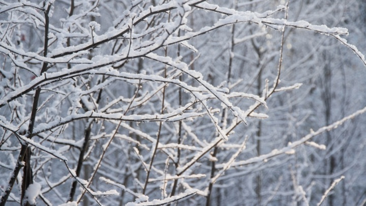 До –33 градусов: в Пермском крае ожидаются морозные выходные