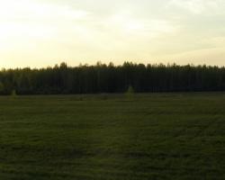 Жизнь за городом: Московский тракт