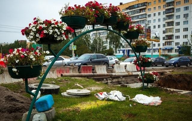 На украшение Московского шоссе и Ново-Садовой вазами с цинией и геранью уйдет 8,9 млн рублей