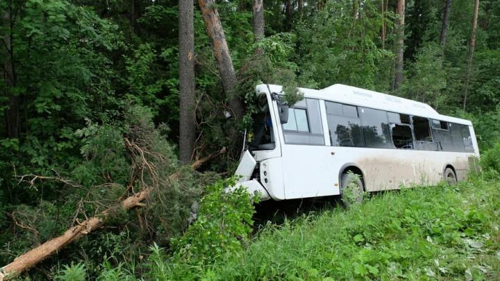 Минтранс Прикамья назвал предварительную причину аварии с автобусом на Якутской