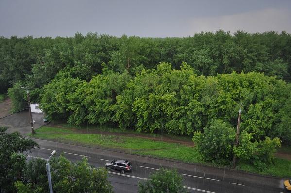 Грозовые дожди и сильный ветер на Южном Урале задержатся до вечера среды