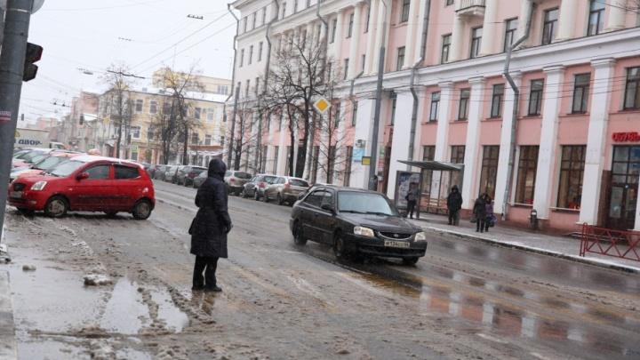 Мэр объяснил, как долго ярославцам придется ждать транспорт без остановок