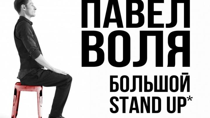 Павел Воля приглашает ярославских зрителей на свой «Большой Stand-Up»