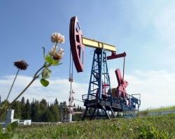 Компания «ЛУКОЙЛ-Пермь» победила в экологическом конкурсе