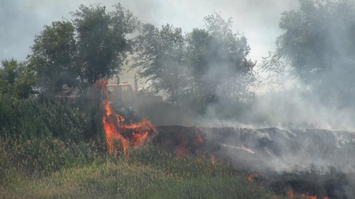 В Волгограде больше часа тушат сухую траву