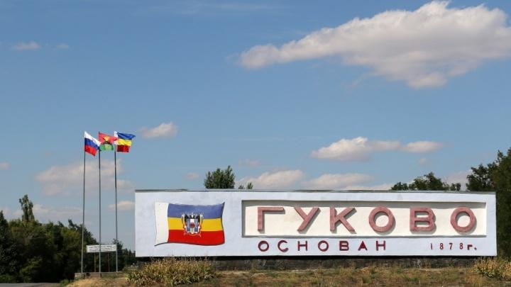 В ТОСЭР «Гуково» появятся тепличный комплекс, завод автопогрузчиков и производство изделий из проволоки