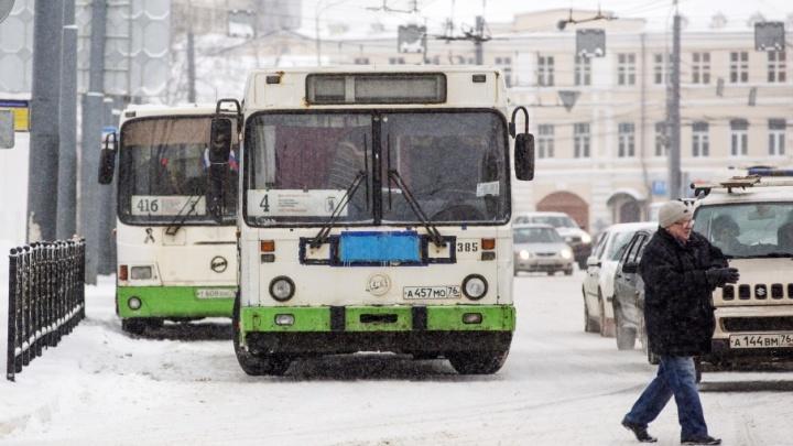 Финансовая ловушка: почему ярославские автобусы не переходят с дорогой солярки на дешёвый газ