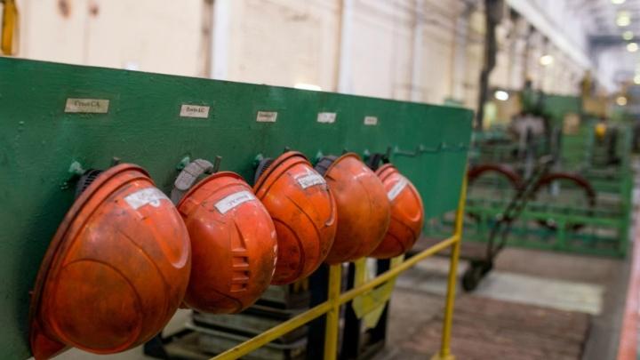 Ожили после кризиса: какие заводы Ярославской области заработали в этом году