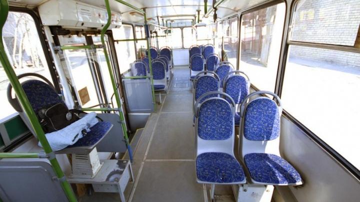 «Это не трамвай и не троллейбус»: на челябинских дорогах появится электробус