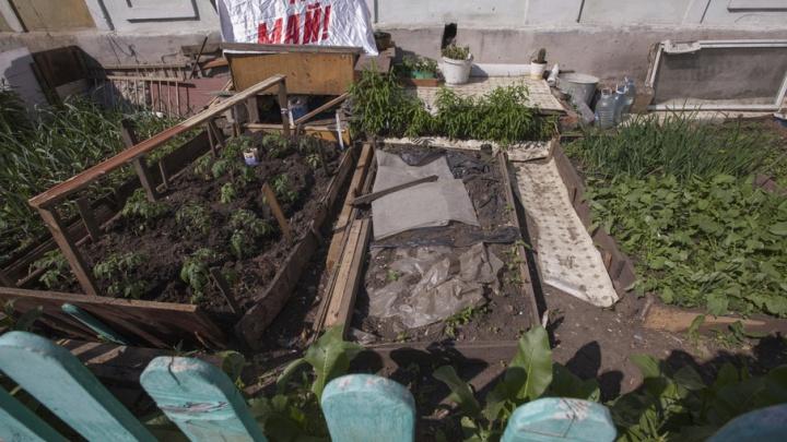 300 тысяч южноуральцев рискуют лишиться земельных участков