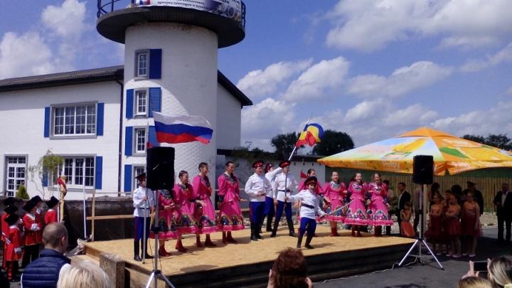 Масштабный фестиваль донской селедки пройдет в Ростове