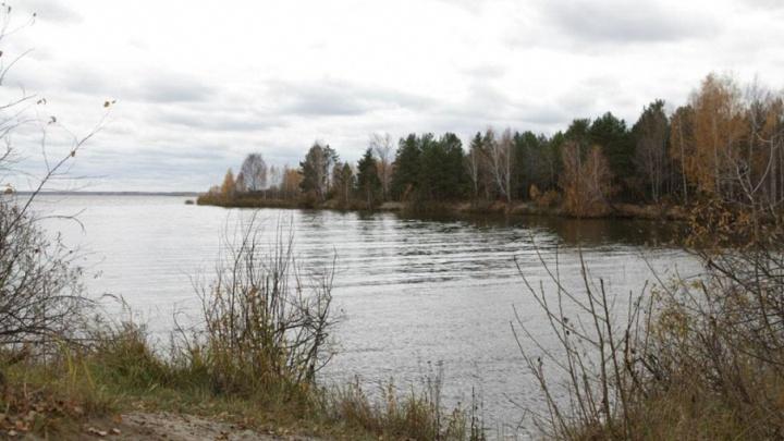 Озеро Алебашево спасают от загнивания: водоем оброс гигантской свалкой и превращается в болото