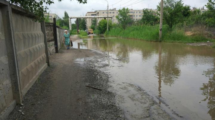В Красноармейском районе Волгограда дорогу к поликлинике нужно преодолевать вплавь