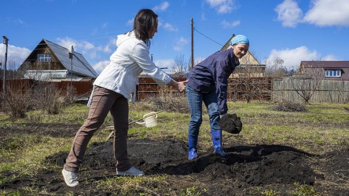 Уроки агрофитнеса: как вскопать огород, постройнеть и не загнуться