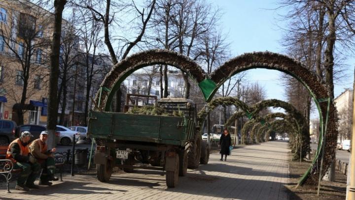 Арки-сердца в Ярославле нарядят в розы и бегонии