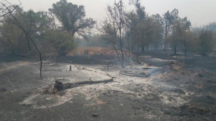 В Волго-Ахтубинской пойме горит заброшенная турбаза