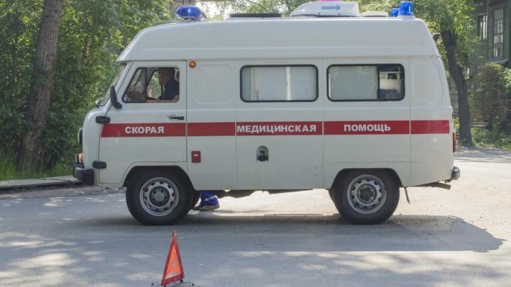 В Пинежском районе пьяный водитель убил трехлетнюю девочку
