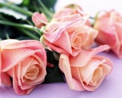 Компания Алтын-Авто поздравляет милых дам с праздником!