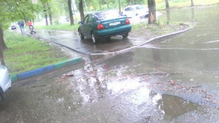 Ехал на пешеходов: из-за огромных луж ярославские водители прокатились по тротуарам