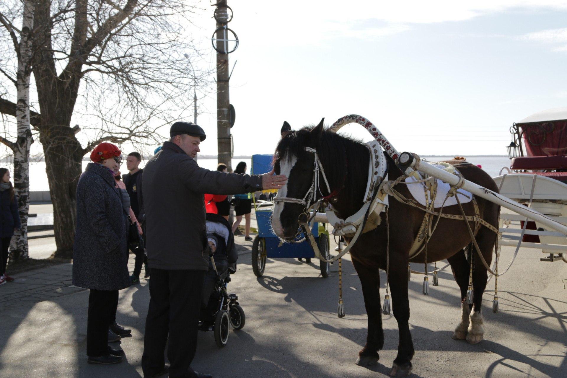Ближе к улице Логинова катание подорожает до 250 рублей
