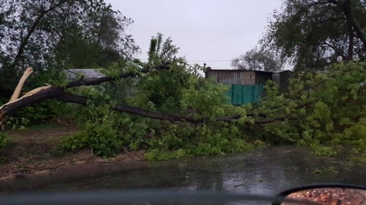 Из-за урагана в Самарской области пострадали 8 человек