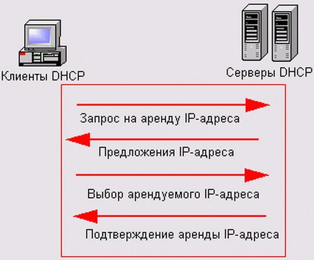 регистрация домен biz