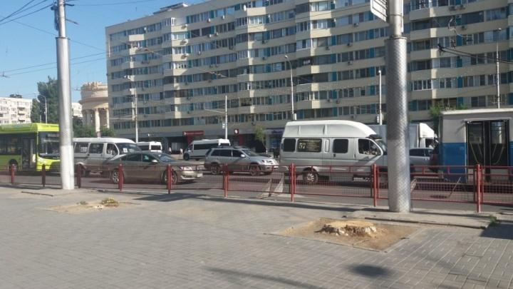 В Волгограде начали травить деревья у закусочных и торговых центров