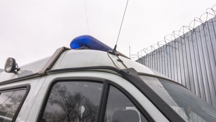 В Ростове-на-Дону полиция нашла третьего зачинщика драки на матче «Крыльев Советов»